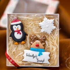pingwinek + renifer